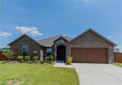 Rockwall Single Family Home For Sale: 1612 Amalfi