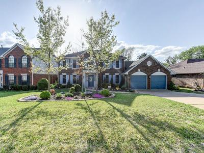Grapevine Single Family Home For Sale: 4146 Mapleridge Drive