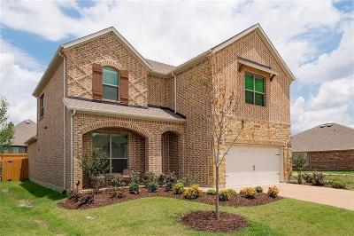 Prosper Single Family Home For Sale: 16505 Toledo Bend Court