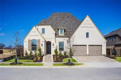 Arlington Single Family Home For Sale: 1409 Lone Eagle