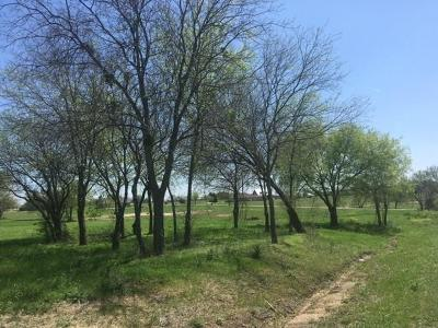 Midlothian Residential Lots & Land For Sale: 880 Black Champ Road