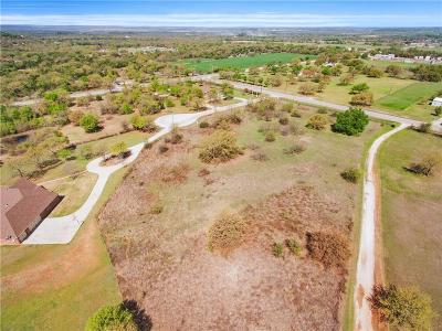 Mineral Wells Residential Lots & Land For Sale: 245 Autumnwood Drive
