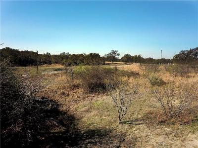 Weatherford Residential Lots & Land For Sale: Tbd Pintail Lane