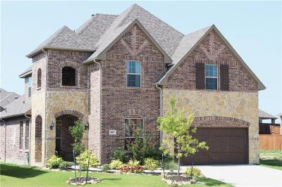 Rockwall Single Family Home For Sale: 807 Knox Drive W