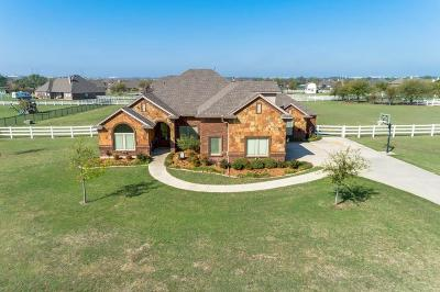 Haslet Single Family Home Active Option Contract: 1017 Maida Vale Lane