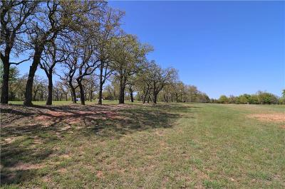 Weatherford Residential Lots & Land For Sale: 257 Duke Trail