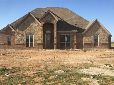 Springtown Single Family Home For Sale: 1016 Jesse James Lane