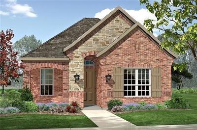 Argyle Single Family Home For Sale: 729 8th Street