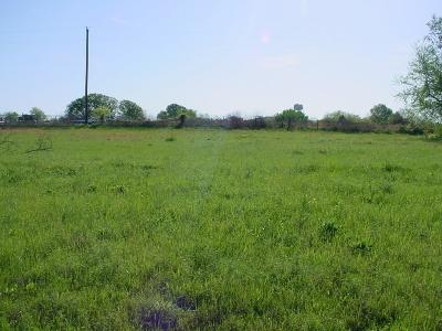 Emory Residential Lots & Land For Sale: 183 Rs County Road 3231