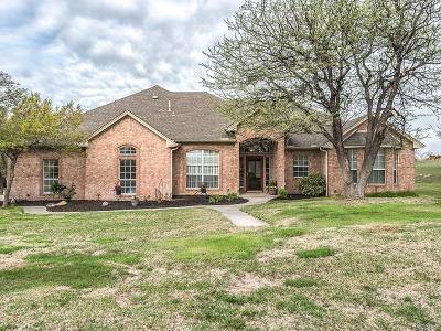 Springtown Single Family Home For Sale: 3001 Agnes Circle