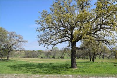 Weatherford Residential Lots & Land For Sale: 3611 Bella Court