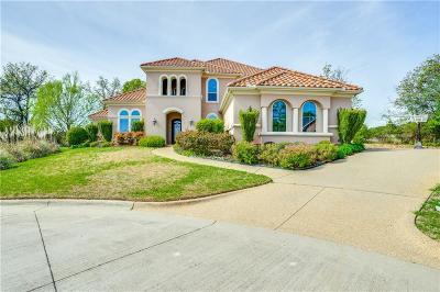 Arlington Single Family Home For Sale: 3814 Park Manor Court