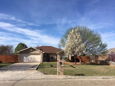 Single Family Home For Sale: 604 Longhorn Drive