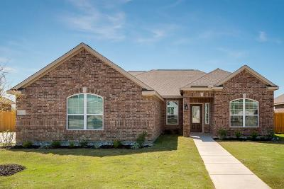 Glenn Heights Single Family Home For Sale: 607 Meadow Springs Drive