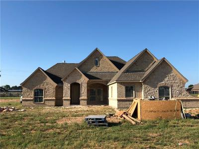 Springtown Single Family Home For Sale: 1005 Jesse James Lane