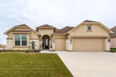 Denton Single Family Home For Sale: 9801 Ironwood Drive
