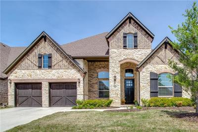 Allen Single Family Home For Sale: 2008 Temperate Drive
