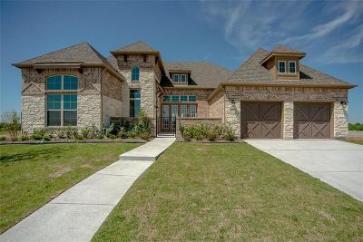 Frisco Single Family Home For Sale: 13773 Fernando Road