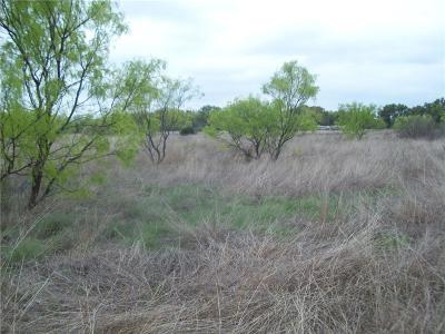 Bangs TX Farm & Ranch For Sale: $49,000