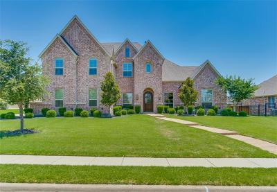 Prosper Single Family Home For Sale: 1010 Caribou Drive