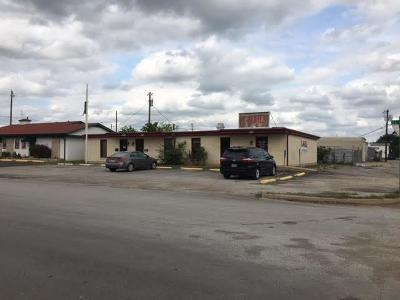 Palo Pinto County Commercial For Sale: 215 SE 17th Avenue