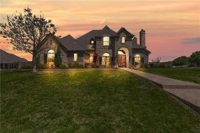 Fort Worth Single Family Home For Sale: 8813 Summit Point Court