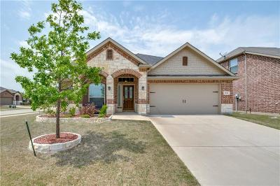 Frisco Single Family Home For Sale: 4828 Ray Roberts Drive