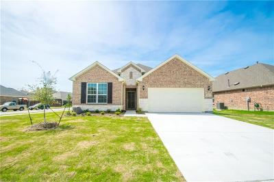 Denton Single Family Home For Sale: 6405 Roaring Creek