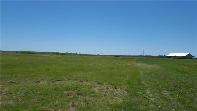 Weatherford Residential Lots & Land For Sale: 08 Blue Ridge Drive