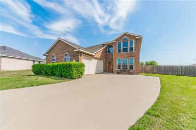 Benbrook Single Family Home Active Contingent: 10513 Trevino Lane