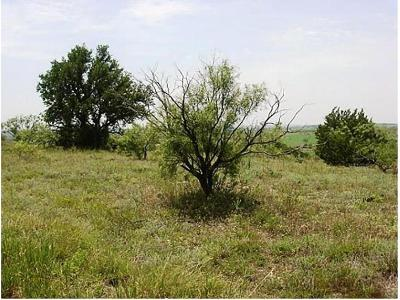 Comanche County Residential Lots & Land For Sale: Lot 59 Comanche Lake Road
