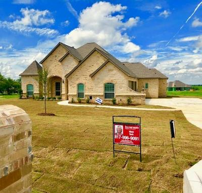 Springtown Single Family Home For Sale: 135 Stanford Lane