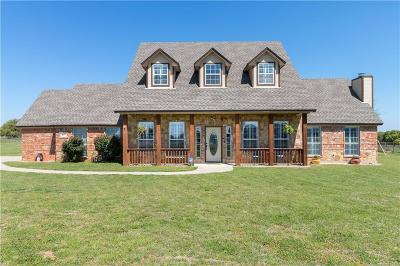 Springtown Single Family Home For Sale: 125 Caballos Lane