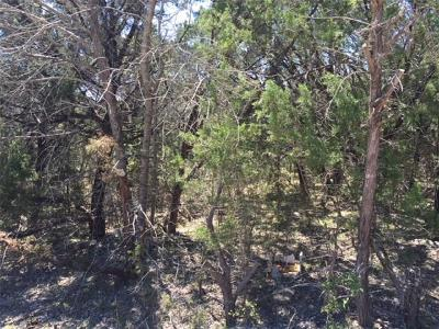 Granbury Residential Lots & Land For Sale: 3619 Durango Trail
