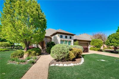 McKinney Single Family Home For Sale: 6700 Oak Hollow Lane