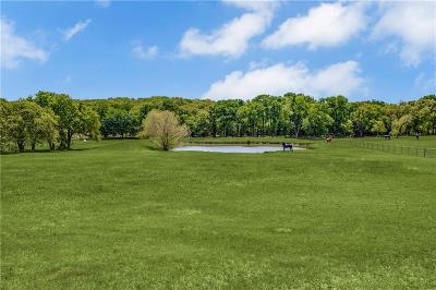 Argyle Farm & Ranch For Sale: 603 Old Justin Road