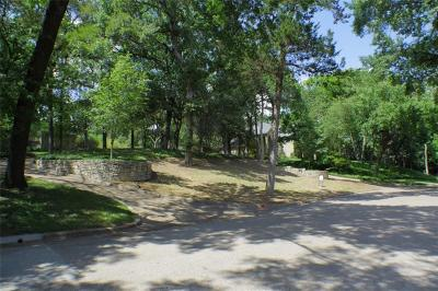 Dallas County Residential Lots & Land For Sale: 717 Kessler Lake Drive