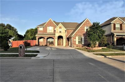 Grand Prairie Single Family Home For Sale: 4724 Barn Owl Trail