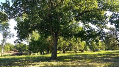 Weatherford Farm & Ranch For Sale: 325 Iroquois Trail