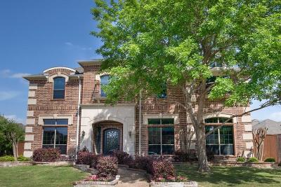 Plano Single Family Home For Sale: 7616 New Heart Drive