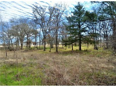 Weatherford Residential Lots & Land For Sale: 401 Taylor