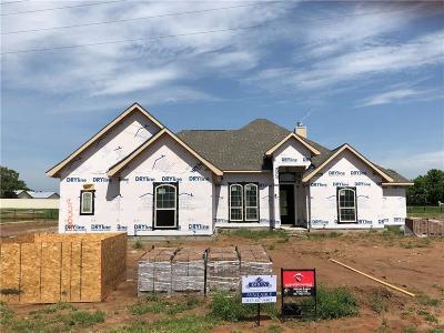 Springtown Single Family Home For Sale: 2008 Dash Lane