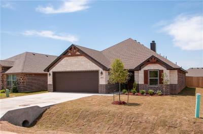 Granbury Single Family Home For Sale: 3114 Main Street