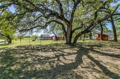 Weatherford Farm & Ranch For Sale: 115 E Windwalker Court