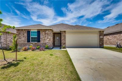 Little Elm Single Family Home For Sale: 1104 Rivers Creek Lane