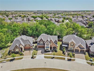 McKinney Single Family Home For Sale: 5305 Fern Valley Lane