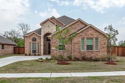 Hickory Creek Single Family Home For Sale: 311 Traveller Street