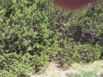 Granbury Residential Lots & Land For Sale: 927 Apache Ridge Road
