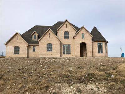 Aledo Single Family Home For Sale: 124 Bearclaw Circle