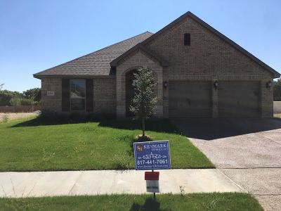 Benbrook Single Family Home For Sale: 6825 Canyon Rock Drive